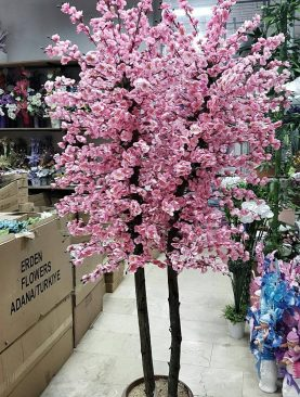 Bahar Dallı Ağaç